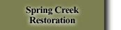Spring Creek Restoration
